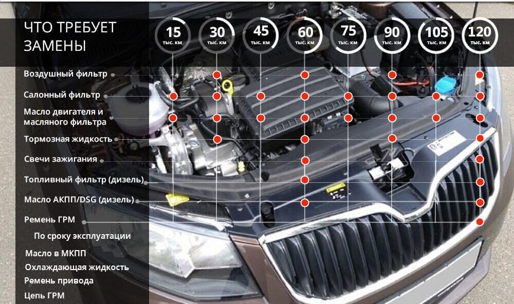 Сроки и особенности ТО для автомобилей Шкода Октавия А7